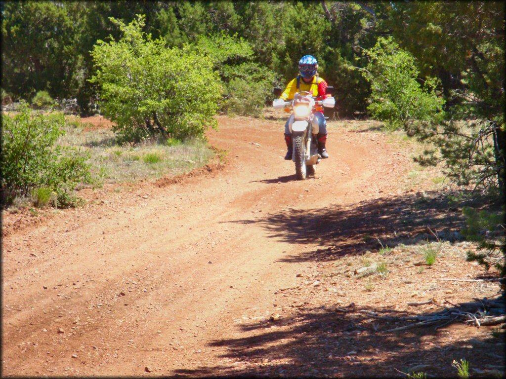 maverick trail motorcycle and atv trail photos