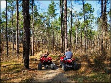 claiborne multi  trails louisiana motorcycle  atv trails