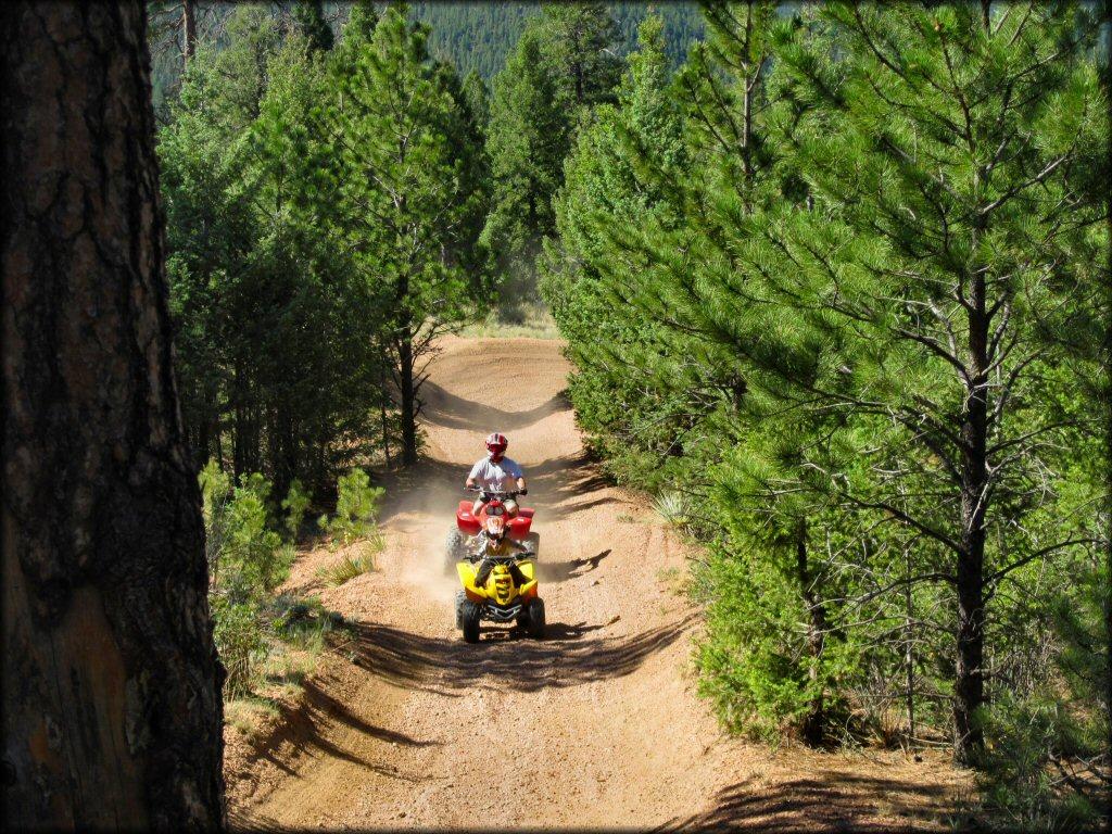 best dirt bike tracks in colorado